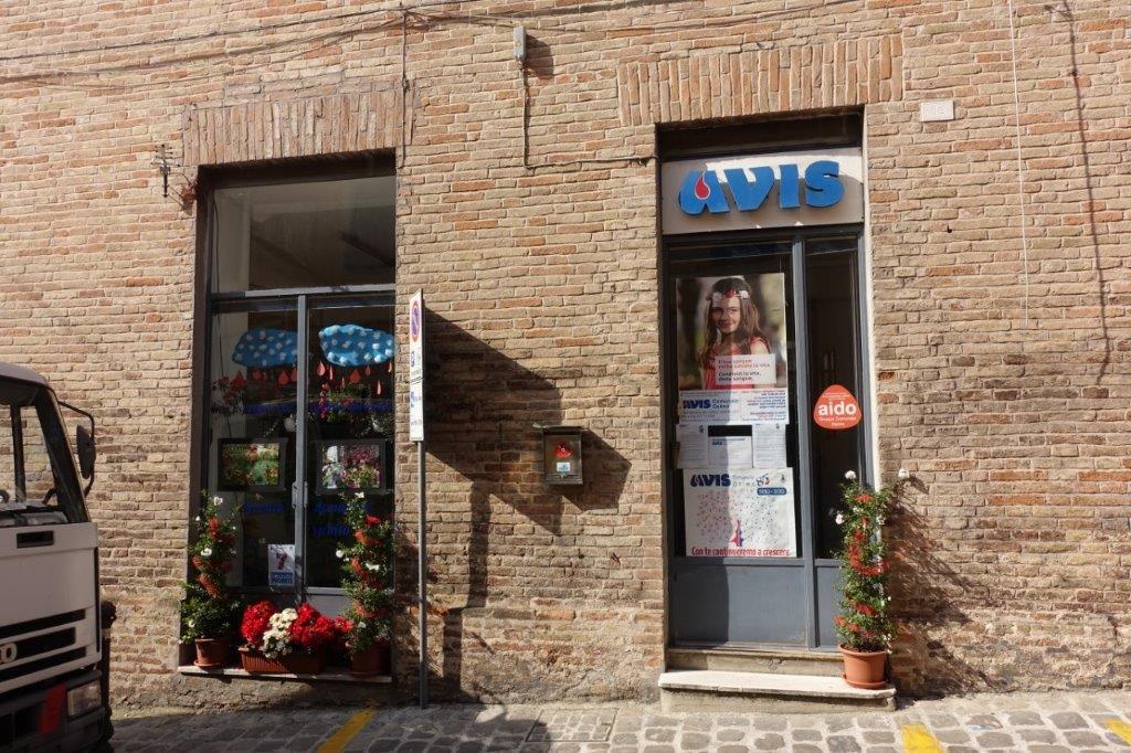 Sede legale:Via Matteotti, 56 - 60027 Osimo (AN)